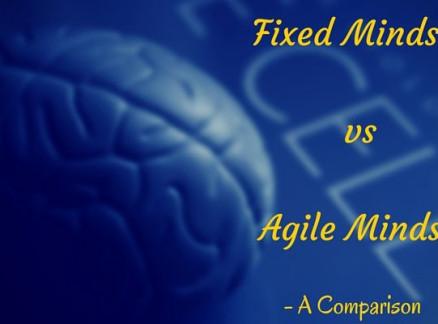 Fixed Mindset vs Agile Mindset- A Comparison