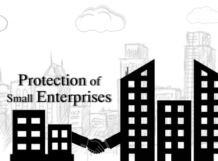 Corporate Coexistence: Protection of Small Enterprises