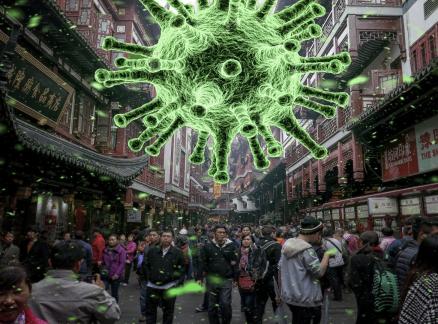 Confused Homo sapiens Smart Pathogen Covid19